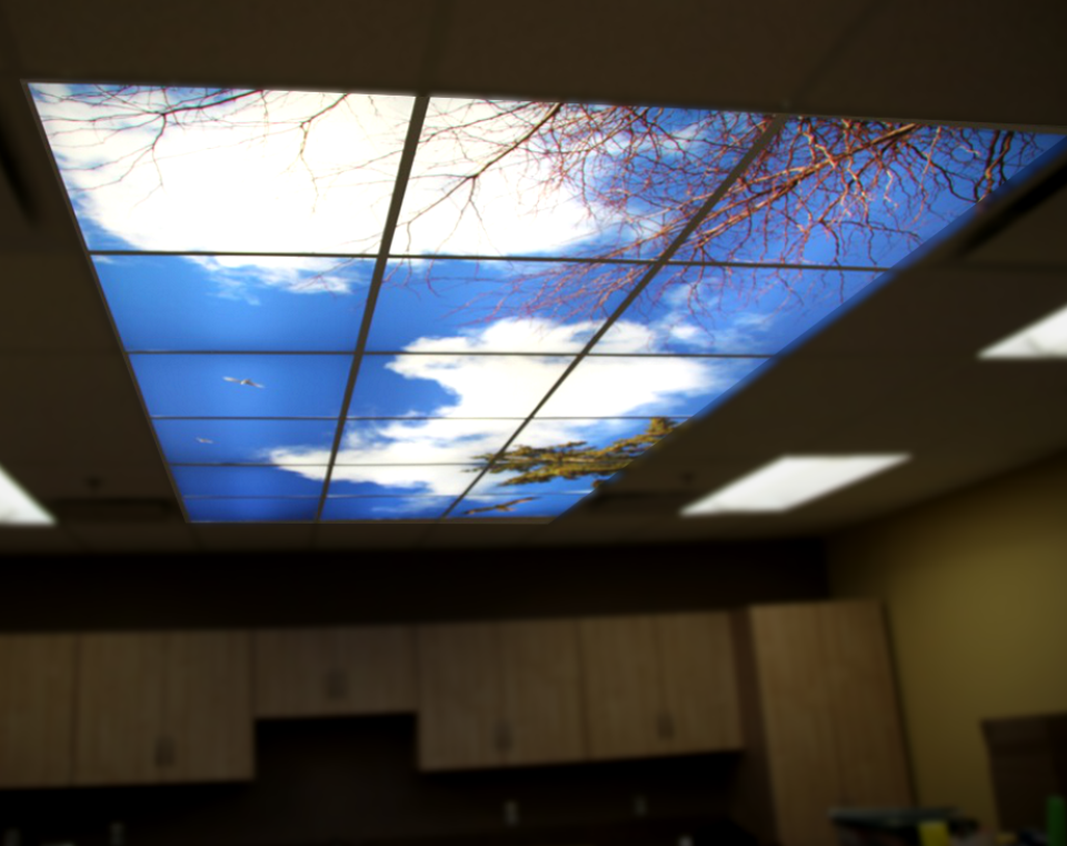 Backlit Photo Ceiling Panels